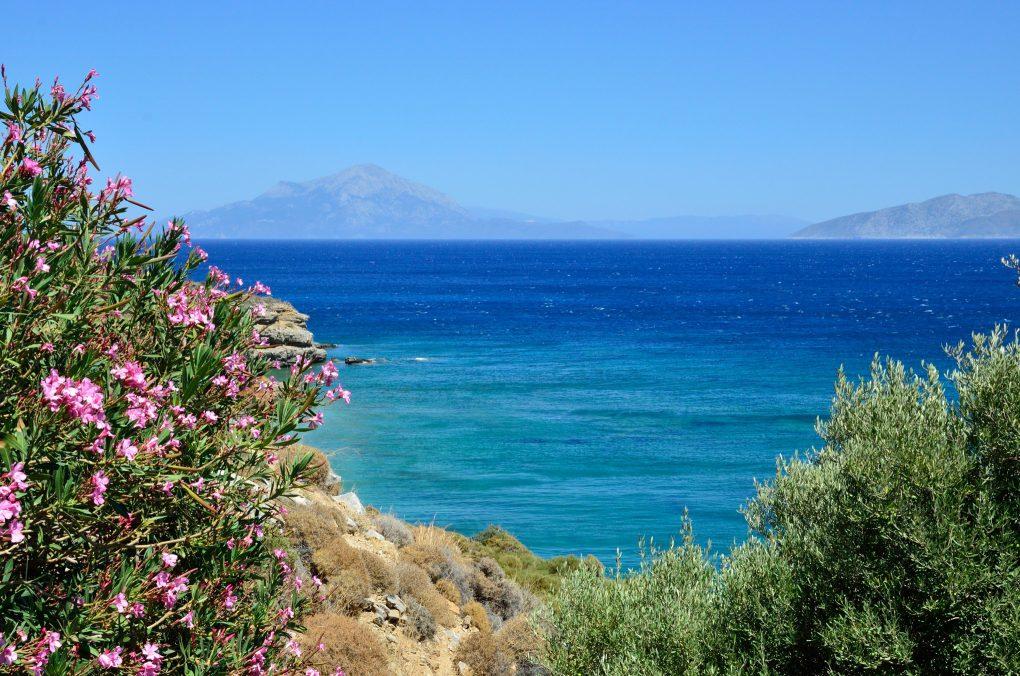 2016-07-24 Ikaria